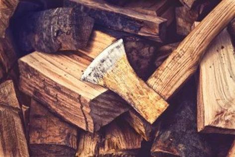 Tampa Tree Wood splitting