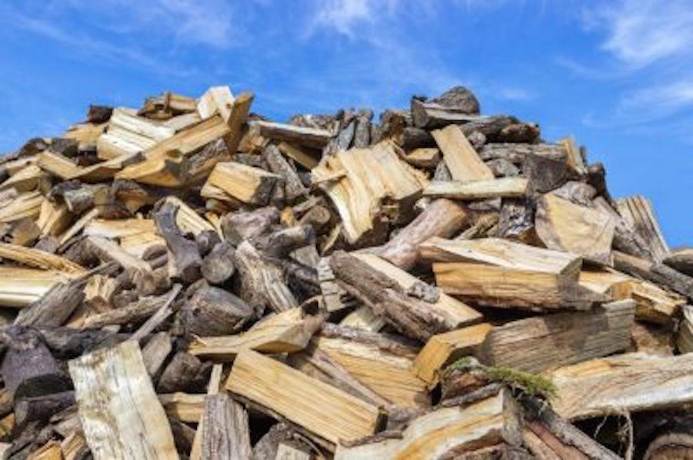 Tampa tree split logs